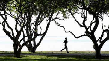 Man jogging in park by the ocean